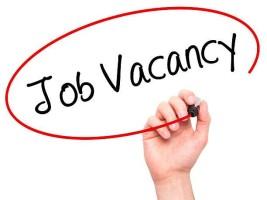 job-vacancy-2-e1617099255549